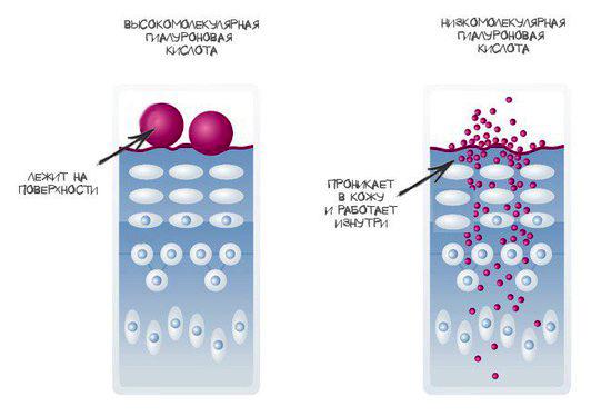 сыворотки с гиалуроновой кислотой