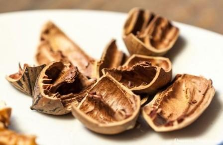 шкорлупа орехов