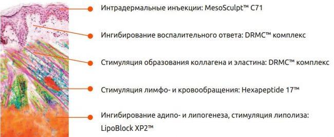 липолитик мезоскульпт