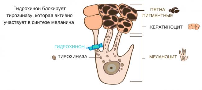 крем с гидрохиноном